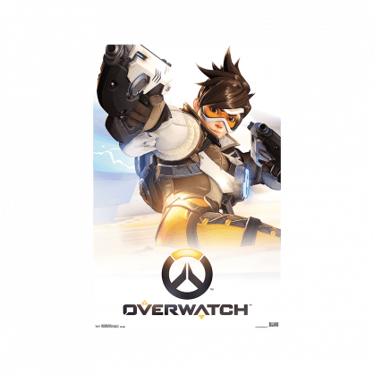 Overwatch: Standard Edition (PC)